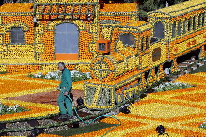Фестиваль лимонов начался во Франции. Фото: Joe Raedle/Getty Images