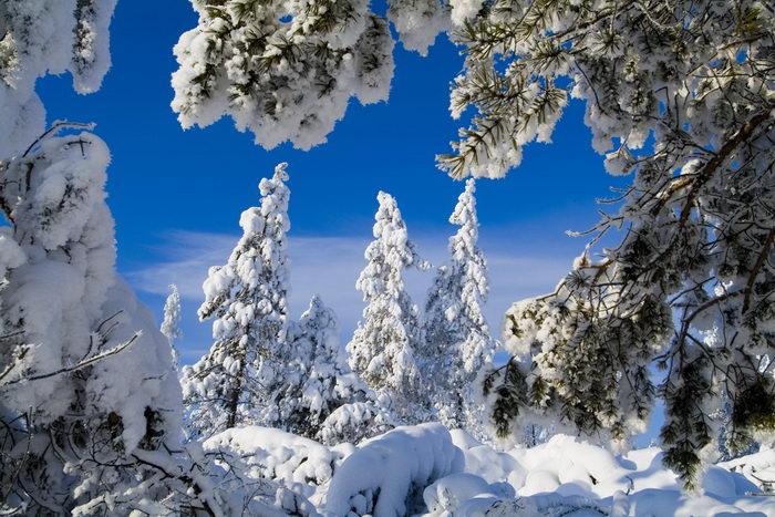 Якутия приглашает туристов. Фото с сайта planetyakutia.com