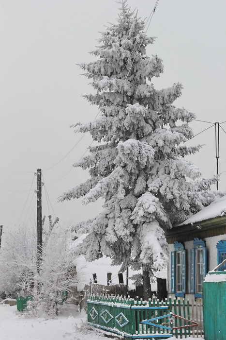 Зимние зарисовки. Фото: Сергей Тугужеков/Великая Эпоха (The Epoch Times)
