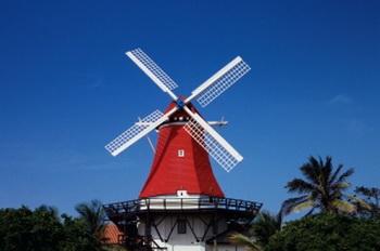 В Арубе, являющейся частью нидерландских Антильских островов, нередко можно увидеть среди пальм голландскую мельницу. Фото с сайта Photos.com