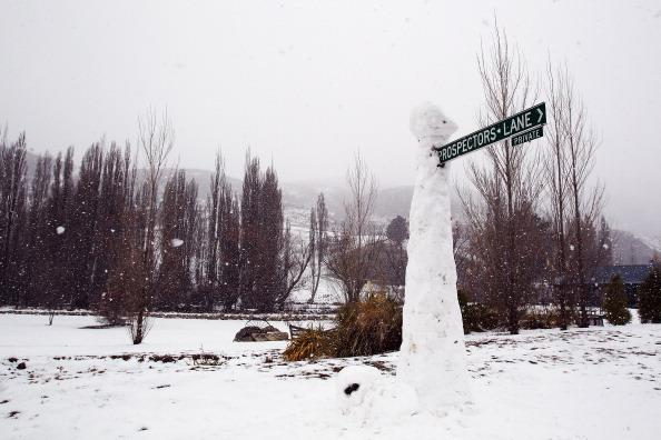 Фоторепортаж о снегопаде в Новой Зеландии. Фото: Hannah Johnston/Getty Images