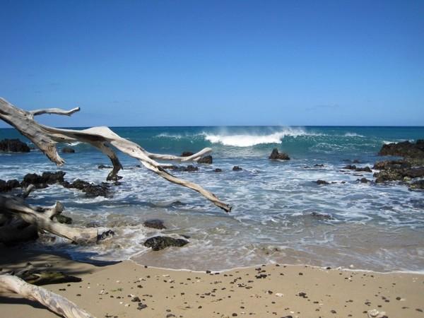 Запланируйте, по крайней мере, один день на то, чтобы насладиться океаном. Есть много пляжей на выбор - оживленные и полные мероприятий, или тихие и уединенные. Фото: MWmedia & Ken Lara