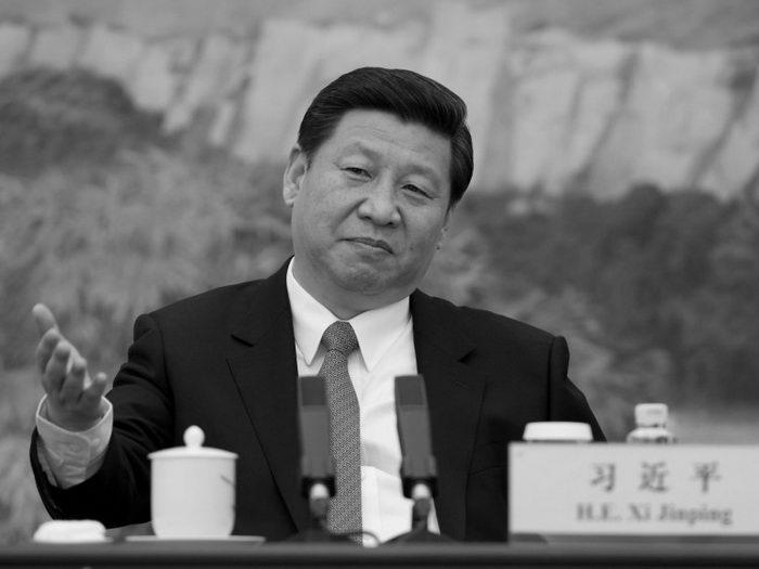 На недавнем заседании Центральной комиссии по проверке дисциплины китайский лидер Си Цзиньпин подчеркнул, что борьба с коррупцией должна быть ориентирована как на «мух», так и на «тигров». Фото: Ed Jones-Pool/Getty images