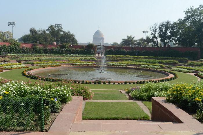 В Индии открыты для посещения Могольские сады. Фото: RAVEENDRAN/AFP/Getty Images