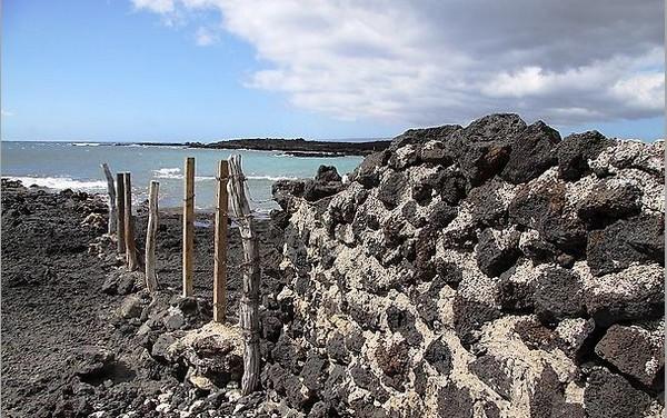 Берег Лаперузы, сформированный извержением вулкана Халеакала в 1790 году, усыпан углем и другими продуктами вулканического происхождения.   Фото: Michael Varga