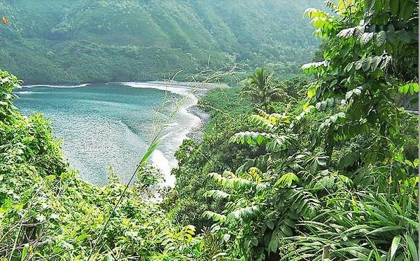 По дороге к Хана. Места, где леса подступают к самому морю. Фото: Giannella M. Garrett