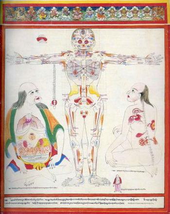 Атлас Тибетской медицины, лист 14. Фото: tibetastromed.ru