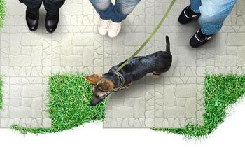 Тротуарная плитка сделает дачный участок уютней. Фото: pavingstones.ru