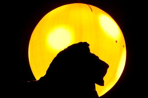 Лондон освещает искусственное солнце. Фото: GEOFF CADDICK/AFP/Getty Images