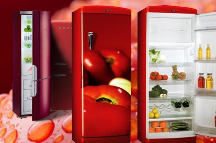 Если цена ремонта Вас уcтраивает и холодильник отремонтировать возможно на дому, то мастер тут же приступит к исполнению заказа. Фото: Domashniy-Holod.ru