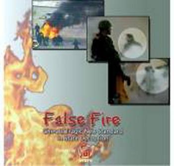 Обложка DVD-диска с записью фильма «Фальшивый огонь», в котором проводится анализ инцидента самосожжения» на площади Тяньаньмэнь
