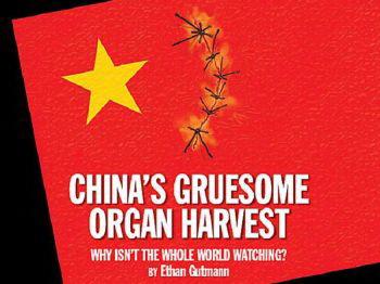 Свидетелю  извлечения органов  в Швейцарии грозит  депортация в Китай. Фото с epochtimes.com