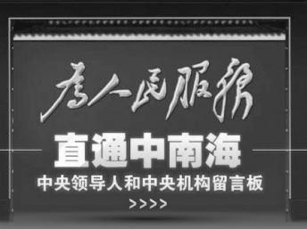 Раздел для критики властей КНР и волеизъявления народа оказался окутан плотной цензурой
