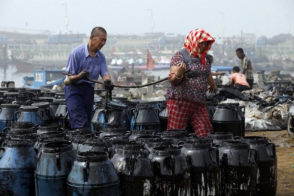 Ликвидация последствий загрязнения нефтью Жёлтого моря. Провинция Ляонин (КНР). Июль 2010 год. Фото: AFP