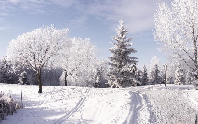Зимний день. Фото с сайта sunhome.ru