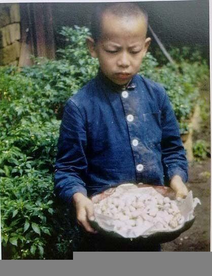 Мальчик держит в руках коконы шелкопряда