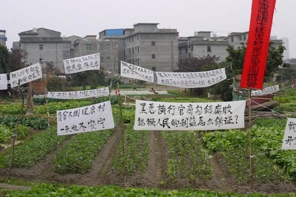 Плакаты и транспаранты с протестом против отъёма земли. Деревня Цзянькан провинции Фуцзянь. Февраль 2011 год. Фото: epochtimes.com
