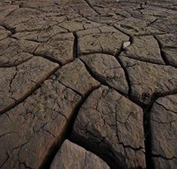 От засухи в Китае страдают более 11 миллионов человек. Фото: AFP