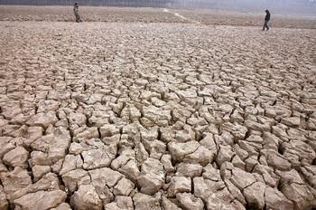 В Китае непрерывно сокращается площадь пахотных земель и ухудшается их плодородность. Фото: AFP PHOTO