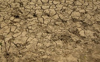 Засуха в Китае может стать самой сильно за 200 лет. Фото с epochtimes.com