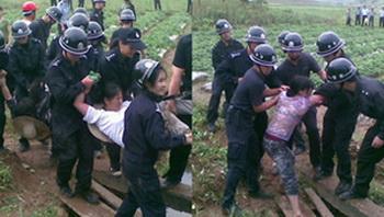 Полицейские забирают крестьян, пытающихся защитить свою землю. Провинция Фуцзянь. Январь 2011 год. Фото: FRA