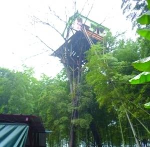 Дом на дереве. Провинция Хунань. Фото с epochtimes.com