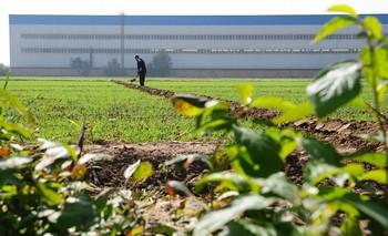 Китайцы стремятся осваивать заграничные земли. Фото: Getty Images