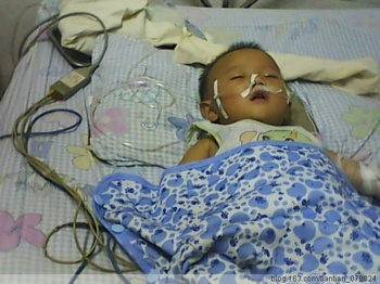От заражённого меламином сухого молока в Китае пострадало около 30 млн детей. Фото с epochtimes.com