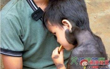 Почти всё тело маленького Бин Бина покрыто шерстью. Фото с epochtimes.com