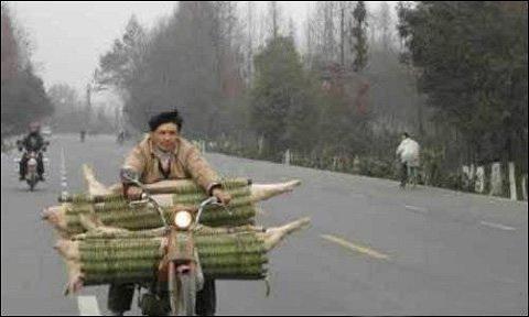 Забавные кадры с китайских улиц. Фото с aboluowang.com