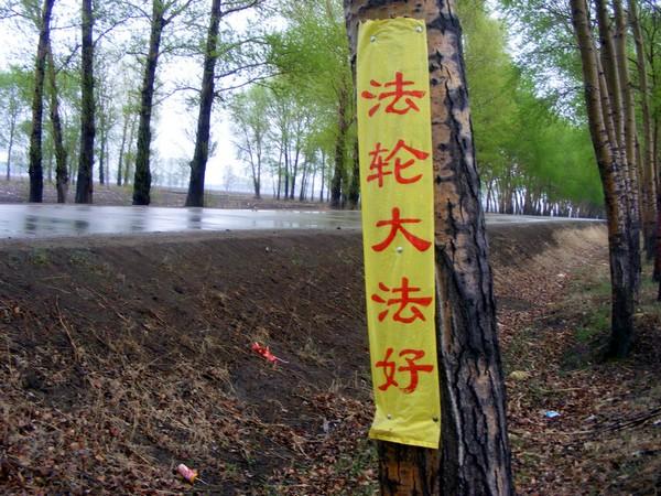 Транспаранты в одном из городов Китая, посвященные Всемирному Дню Фалунь Дафа (Фалуньгун). Фото: minghui.org