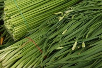 Лук душистый в Китае производят с применением сильных токсичных препаратов. Фото: Clipart.com
