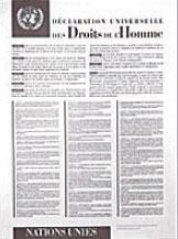 Фото: Французская версия «Всеобщей декларации прав человека» (галерея ООН).