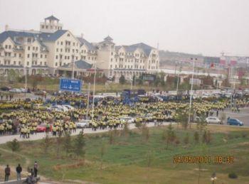 25 мая студенты поддержали протест против правительства Силингол. (Southern Mongolian Human Rights Information Center)