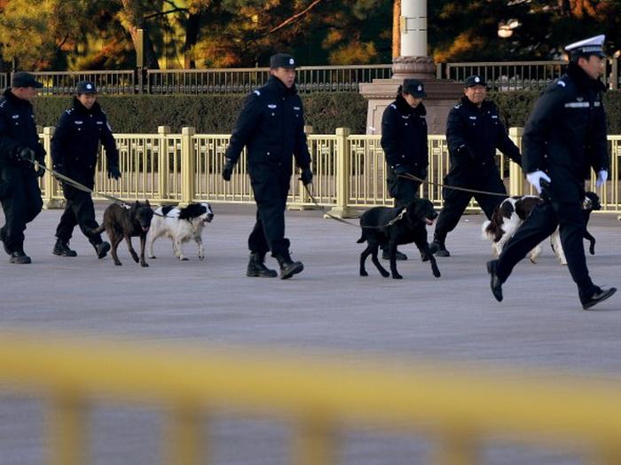 Наряд полиции с собаками патрулирует во время закрытия XVIII съезда партии. Фото: Mark Ralston/AFP/Getty Images