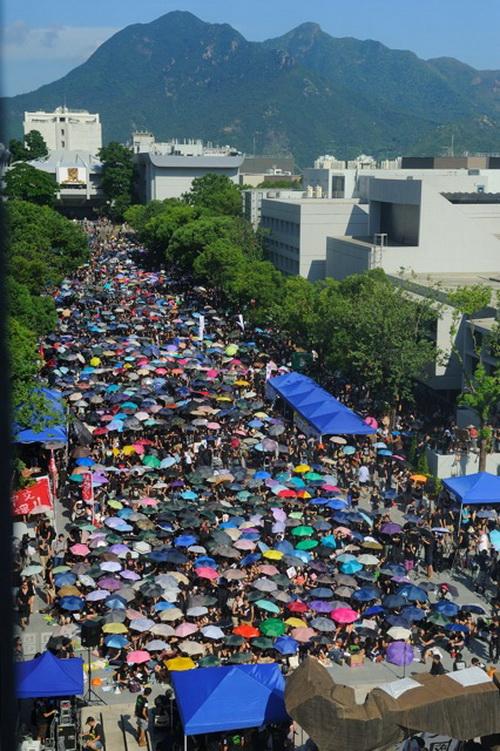 Студенты Гонконга начали забастовку во вторник, 11 сентября, выступая против «национальной воспитательной программы», навязываемой Пекином. Фото: Сун Сянлун/Великая Эпоха