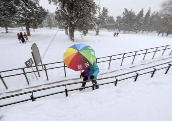 Самые обильные за последние почти 60 лет осадки снега выпали в Пекине и Тяньцзине. Фото: LIU JIN/AFP/Getty Images