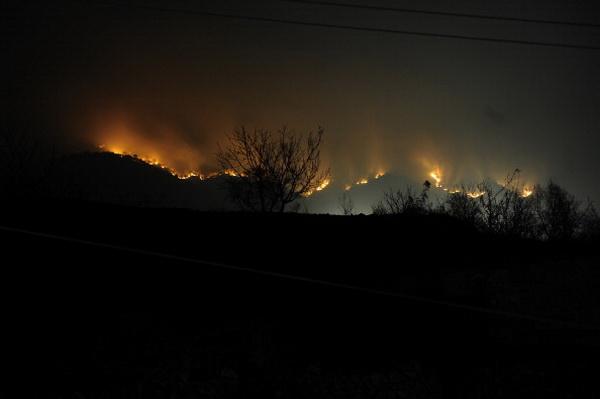 Пожар бушует на в отдаленном горном районе Циньхуандао, северо-востоке провинции Хэбэй Китая. Фото: Getty Images.