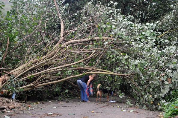 Тайфун Nesat бушует на Хайнане. Фото: Laurent Fievet/AFP/Getty Images