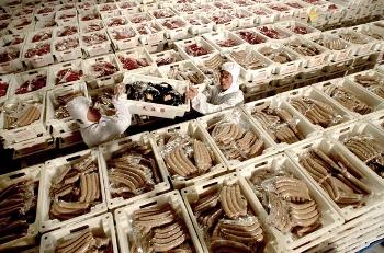 Экспорт токсичной пищи и поддельной и некачественной продукции Китаем, приведет к гибели международных отношений и международной напряженности. На рисунке показано как в США конфисковали в апреле импорт из Китая из 107 видов продукции. Фото: epochtimes.com
