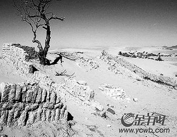 Пустыня, которую называют «Небесной»,  подступает к Пекину со скоростью 4 м в год.