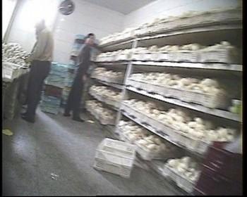 В этом маленьком цеху каждый день изготовляется более 10 тысяч проблемных мантов. Фото с epochtimes.com