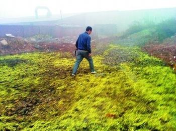 Большие скопления хромового шлака в Китае наносят серьёзный ущерб экологии. Фото с epochtimes.com