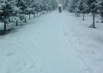 В последние дни температура воздуха в уезде Цинхэ района СУАР опустилась до минус сорока градусов Цельсия. Фото с epochtimes.com