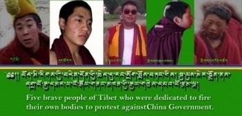 Тибетские монахи, совершившие самосожжение в знак протеста в этом году. Фото с epochtimes.com