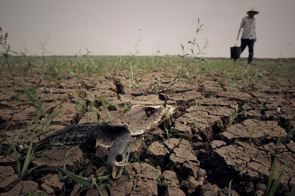 В Китае надвигается кризис нехватки воды. Фото: STR/AFP/Getty Images