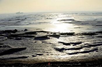 Бохайский залив постепенно «умирает» от загрязнения. Фото: AFP/Getty Images