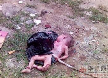 Мёртвый младенец на свалке недалеко от пункта планирования рождаемости. Город Чжанцзян провинции Гуандун. Фото с 163.com