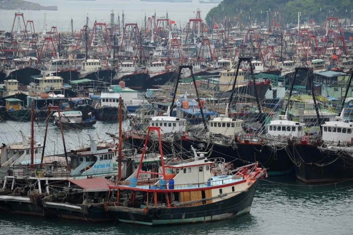 Три китайских судна были освобождены из двухнедельного плена в Северной Корее. Фото: ANTONY DICKSON/AFP/Getty Images