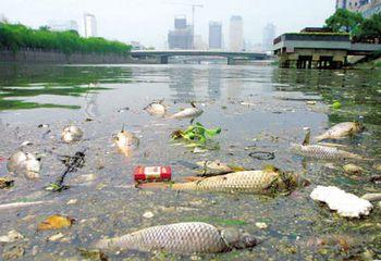 В Китае 40% рек загрязнены до последней степени. Фото с news.guhantai.com